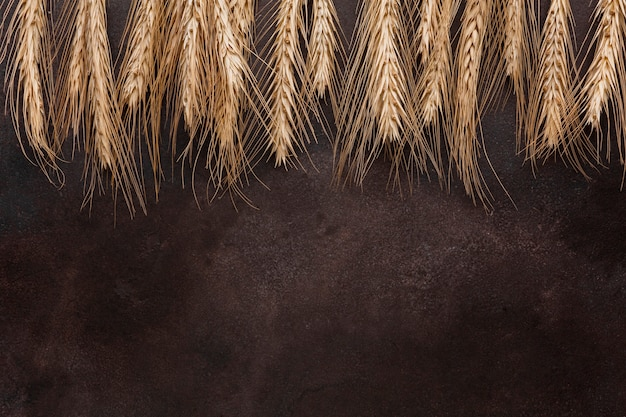 Nasiona pszenicy na teksturowanej tło