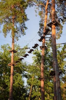 Nasłoneczniony tor przeszkód wysoko wśród drzew w parku linowym