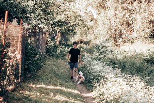 Nastolatek 11 lat spaceruje z psem na smyczy chodnikiem wzdłuż zielonych zarośli.