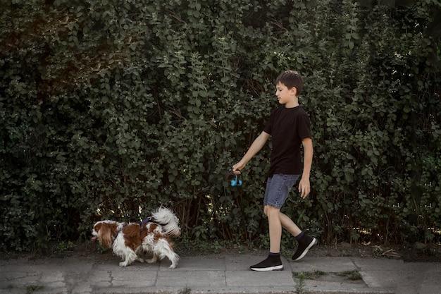 Nastolatek spaceruje z psem na smyczy chodnikiem wzdłuż zielonych zarośli.