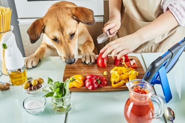 Nastolatek z psem przygotowuje online, wirtualną lekcję mistrzowską i przegląda cyfrowy przepis na tablecie dotykowym, przygotowując zdrowy posiłek w domowej kuchni.