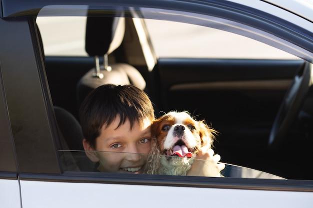 Nastoletni chłopiec uśmiechający się patrząc przez okno samochodu z psem cavalier king charles spaniel, marzący o wyjeździe