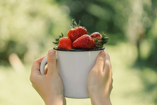 Nastoletnia dziewczyna trzyma dojrzałą, smaczną jasną truskawkę w filiżance letnia witamina jedzenie dojrzałe ekologiczne st...