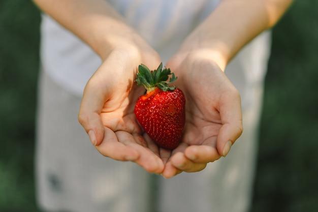 Nastoletnia dziewczyna trzyma dojrzałe, smaczne, jasne truskawki letnie witaminowe jedzenie dojrzałe organiczne truskawki