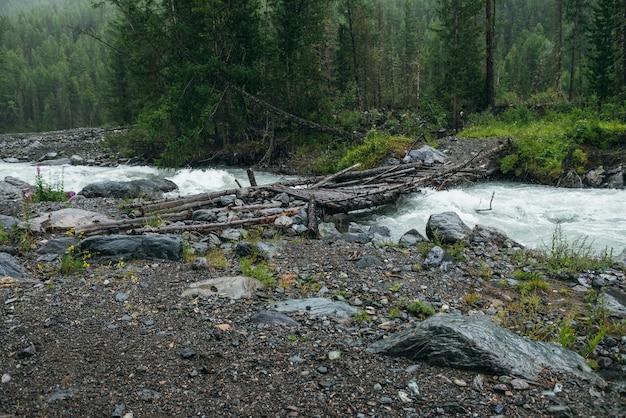 Nastrojowy deszczowy krajobraz z lasem i mostem nad górską rzeką. ciemna sceneria lasu z potężną rzeką w deszczu. most przez rzekę górską w deszczu. górski potok w deszczową pogodę.