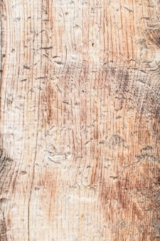 Natura stary wzór kory drewna lub tekstury. stare szorstkie drzewo, brązowe naturalne drewniane tła. ścieśniać.