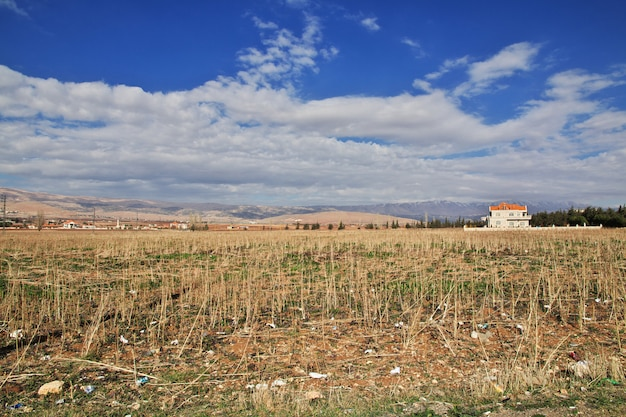 Natura w dolinie libanu bekaa