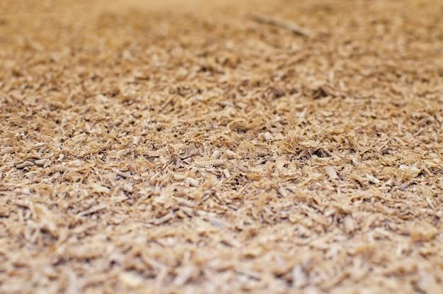Naturalna brązowa tekstura tło trociny, trociny dębowe. skopiuj miejsce.