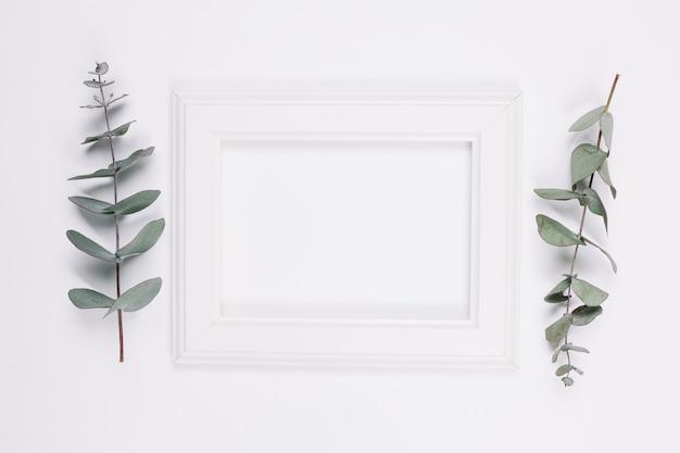 Naturalna dekoracja z ramą