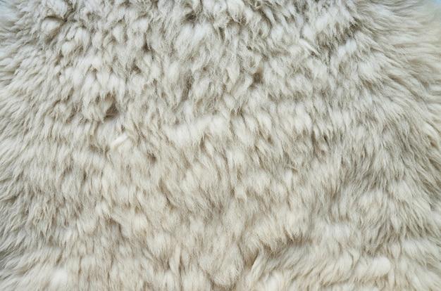 Naturalna puszysta płaska skóra owcza
