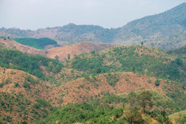 Naturalna sceneria tropikalnego lasu z górami w południowo-wschodniej azji