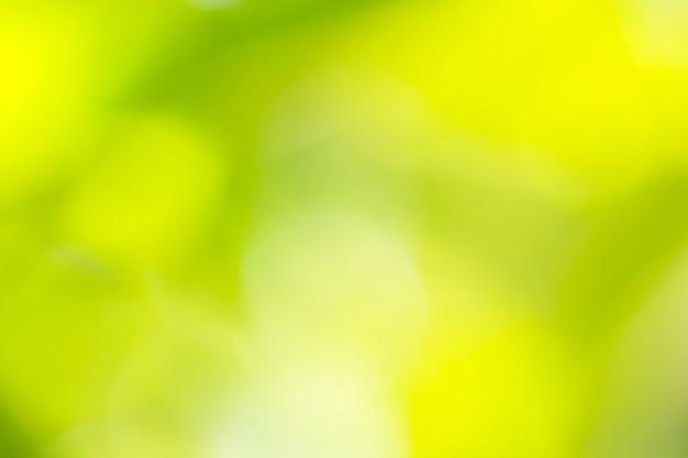 Naturalna zieleń i żółty zamazany tło