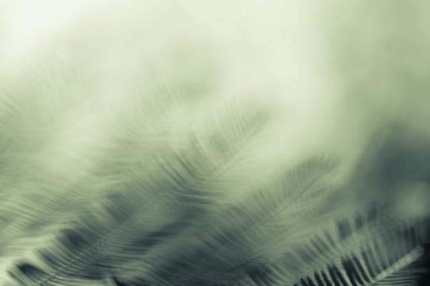 Naturalne abstrakcyjne tło