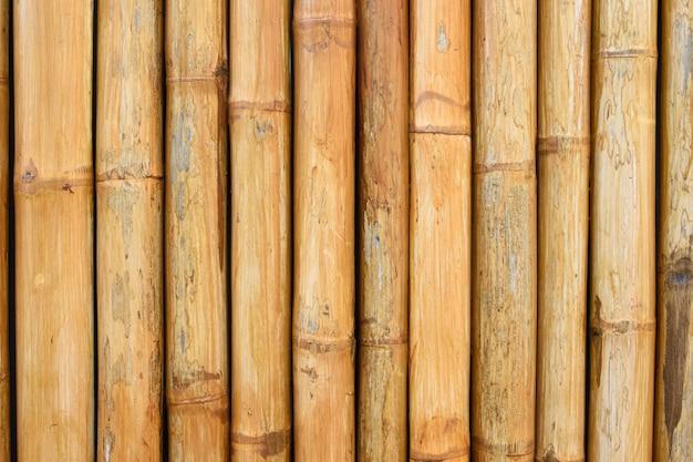 Naturalne bambusowe tło ogrodzenia w ogrodzie