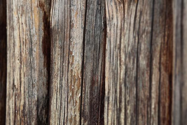 Naturalne brązowe tło drewna. strzał zbliżeniowy