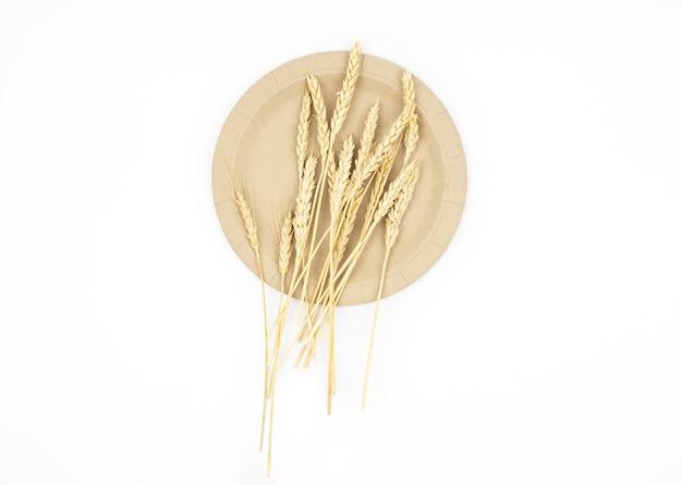 Naturalne ekologiczne kłoski pszenicy na papierowych eko daniach na białym tle izolat