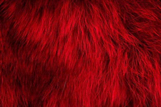 Naturalne futro czerwone tło