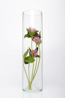 Naturalne kosmetyki organiczne produkty z roślin i kwiatów, kosmetyki ziołowe do pielęgnacji skóry
