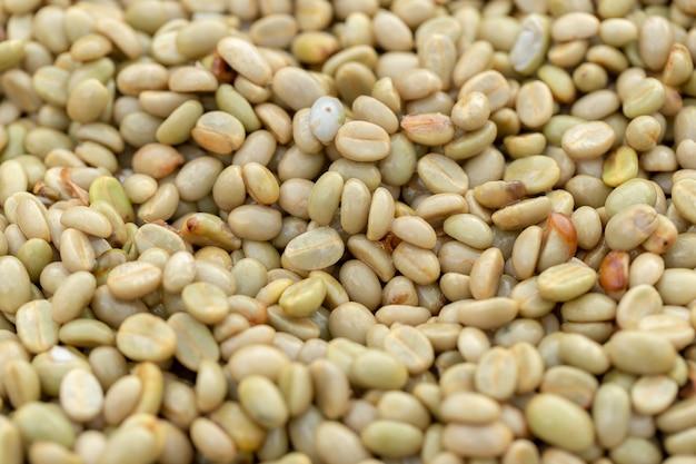 Naturalne organiczne ziarna zielonej kawy