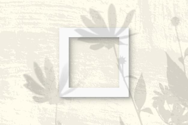 Naturalne światło rzuca cienie z kwiatów topinamburu na kwadratową ramkę
