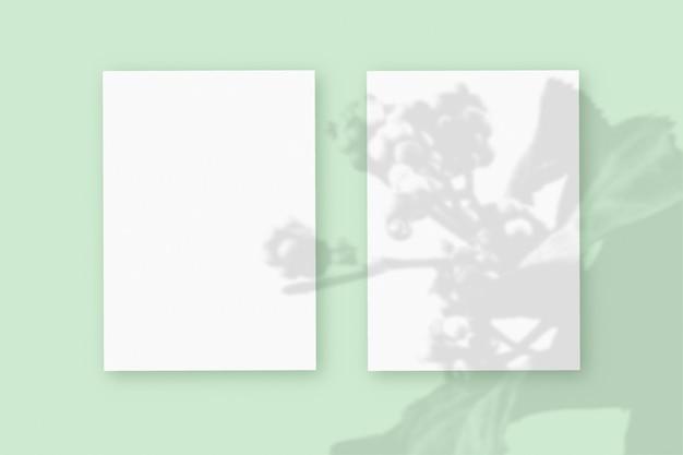 Naturalne światło rzuca cienie z rośliny na 2 pionowe arkusze białego, teksturowanego papieru, leżące na zielonym tle z teksturą. makieta.