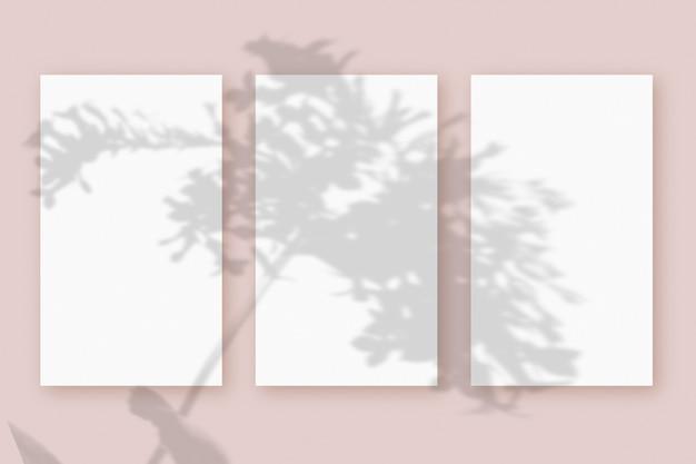 Naturalne światło rzuca cienie z rośliny na 3 pionowe arkusze białego teksturowanego papieru, leżące na różowym teksturowanym tle. makieta.