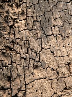 Naturalne teksturowane stare drewniane tło grunge