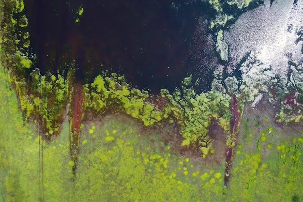 Naturalne tło jezioro we fragmencie stepowym. zielony brzeg i woda, abstrakcyjny fragment natury antena
