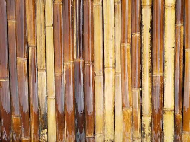 Naturalny bambusowy wzór