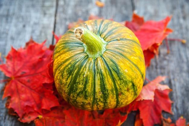 Naturalny jesień widok dyni i liści klonu na drewniane tła. inspirująca tapeta z października lub września. zmiana pór roku, koncepcja dojrzałej żywności ekologicznej. halloween party święto dziękczynienia.