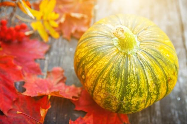 Naturalny jesienny widok dyni i liści klonu na drewnianym tle inspirujący październik lub wrzesień...