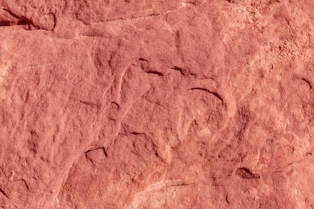 Naturalny koralowy abstrakcjonistyczny tło i tekstura - wizerunek