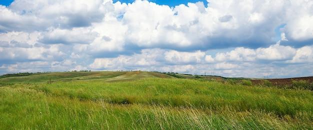 Naturalny krajobraz lato