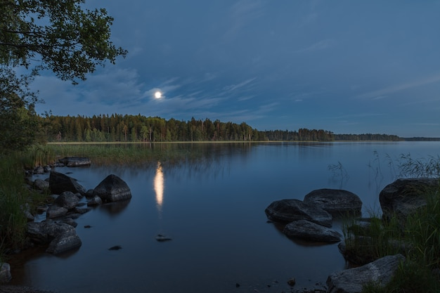 Naturalny krajobraz oświetlony przez księżyc