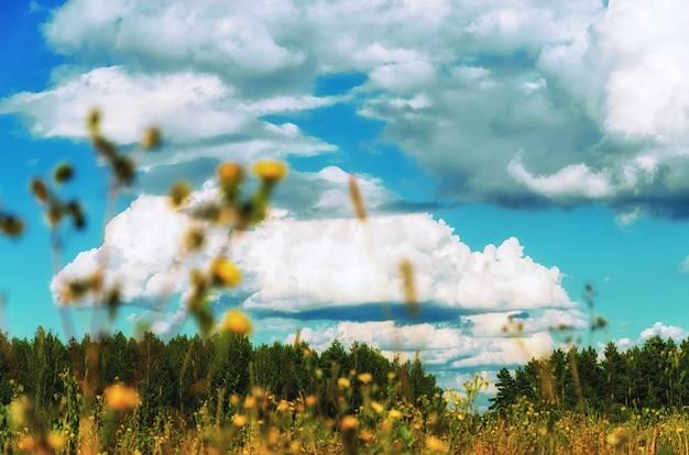 Naturalny krajobraz wczesną wiosną w rosji
