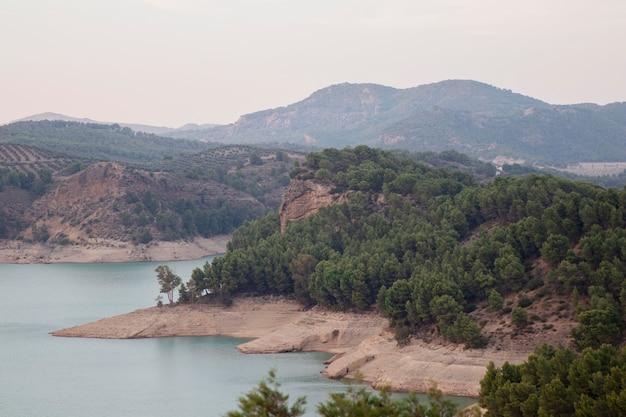 Naturalny krajobraz z pięknymi drzewami