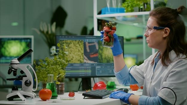 Naukowiec farmaceutyczny patrzący na szkło z truskawkami podczas pisania na komputerze ekspertyzy medycznej. biochemik nastrzykujący owoce pestycydami sprawdzający test genetyczny pracujący w laboratorium rolniczym