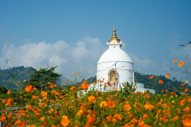 Nepalu pagoda pokoju