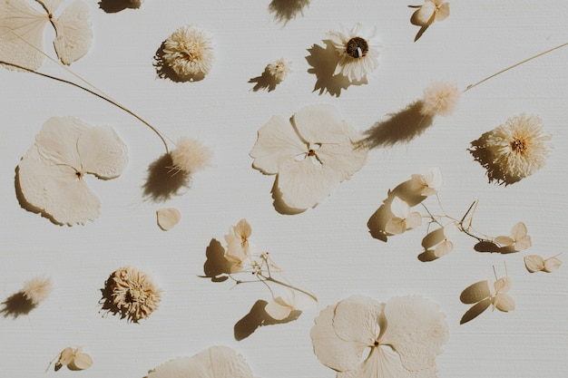 Neutralna kompozycja kwiatowa z suchymi płatkami kwiatów i gałązkami na szaro