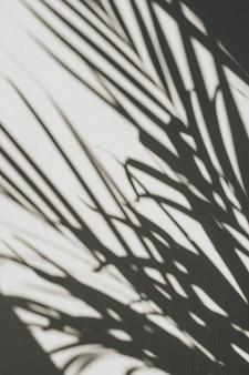 Neutralna kompozycja kwiatowa z sylwetką tropikalnej gałązki palmowej