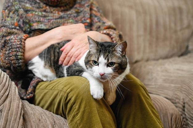 Nie do poznania stara kobieta gładząca kota.