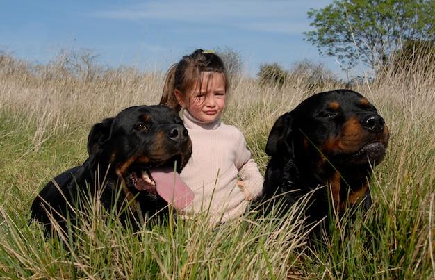 Niebezpieczne psy i dziecko