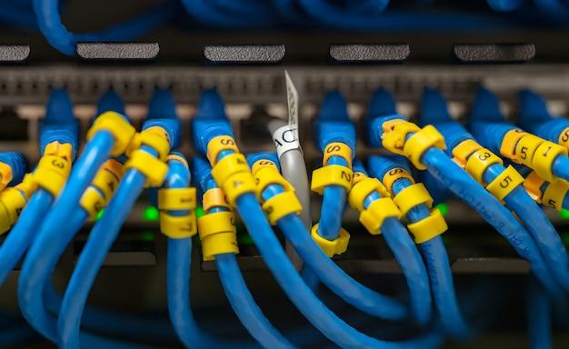 Niebieski kabel lan na przełącznikach sieciowych