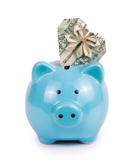 Niebieski skarbonka i serce dolara
