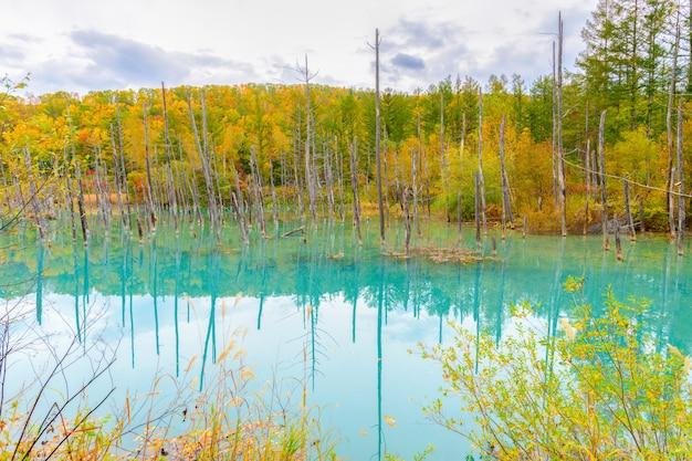 Niebieski staw (aoiike) w biei, hokkaido jesień,