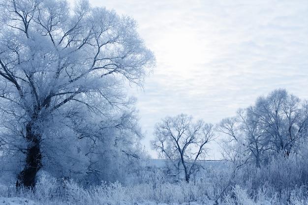 Niebieski zimowy krajobraz z pochmurnym niebem