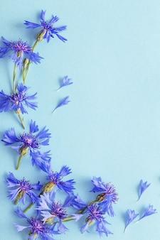 Niebieskie chabry na niebieskim papierze