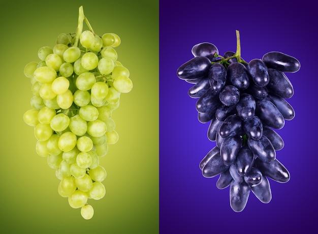 Niebieskie i zielone winogrona na kolorowym tle