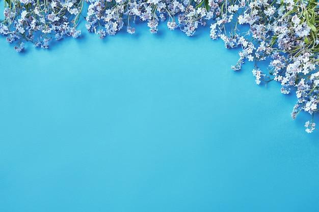 Niebieskie kwiaty niezapominajki na jasnoniebieskim