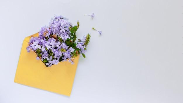 Niebieskie kwiaty w żółtej kopercie na jasnoniebieskim tle